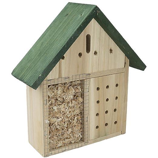 2 opinioni per asetta per insetti, con spioncino, per api e coccinelle, farfalle, ideale per