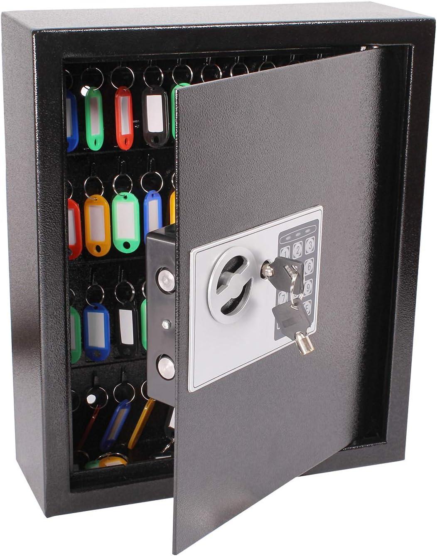 40 Keys BISupply Key Safe Lock Box Key Holder Lock Key Cabinet Wall Mount Key Box Combination Lock and Keyed Entry