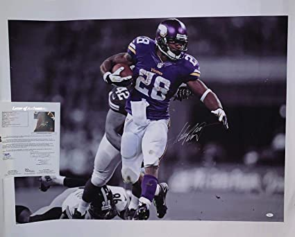f0bcf47a Adrian Peterson signed Minnesota Vikings 43x36 Canvas autographed ...
