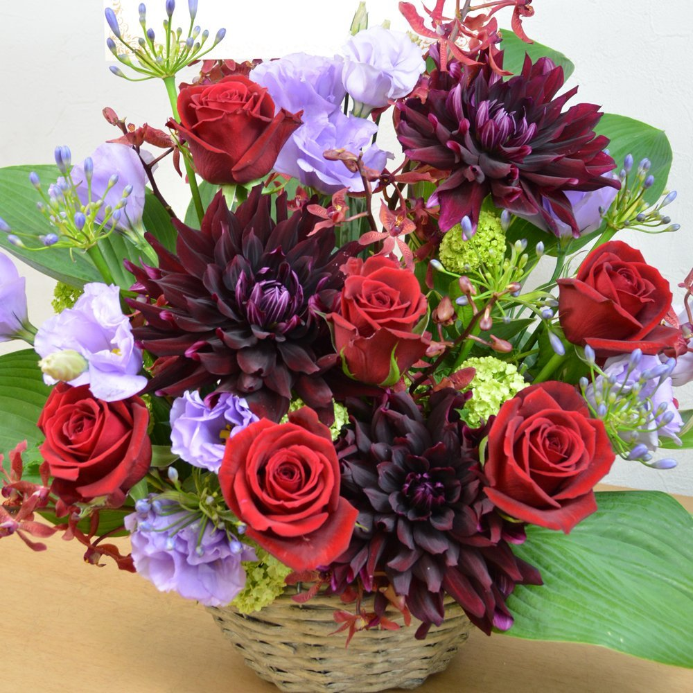 [エルフルール]【立て札可】フラワーギフト カラーが選べる 店長おまかせお祝い花 移転祝い 開業祝い 開店祝い 開院祝い (レッド系) B01GMZ9W8W レッド系 レッド系