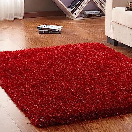 Amazon.com: DIT Fluffy Soft Floor Carpets, Area Rugs Anti ...