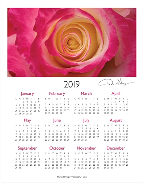 Amazon Com 2019 Love Red Rose One Page Fine Art Wall Or Desk