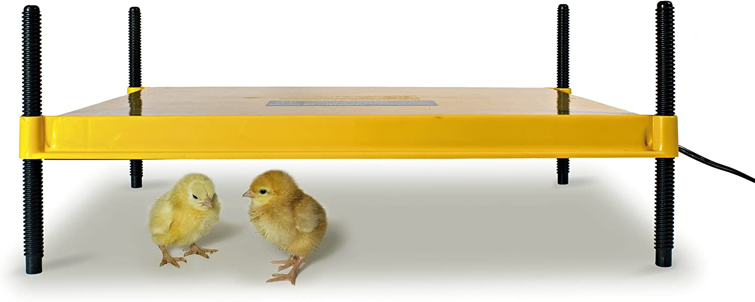 T-CAT Chick Brooder Chick Warmer,Warms Up to 20-35 Chicks 42cmx7cmx33cm
