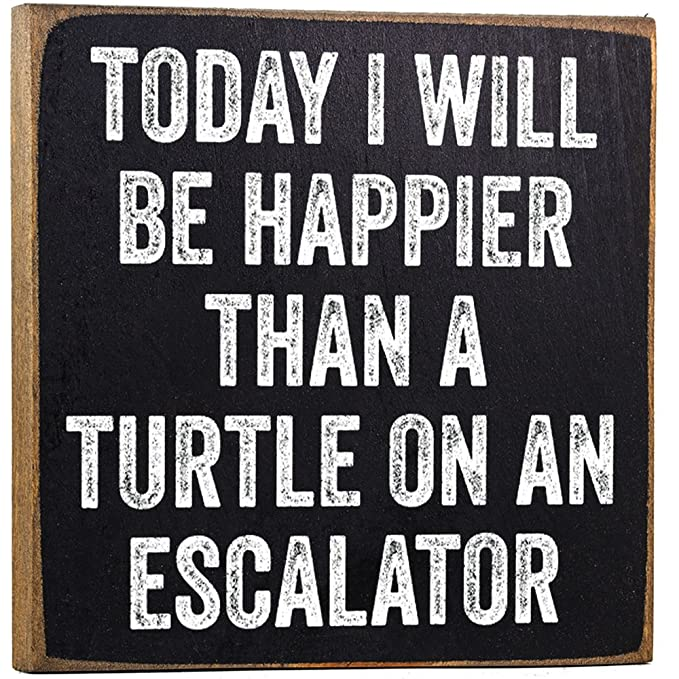 Make Em Laugh Today Turtle Wooden Sign