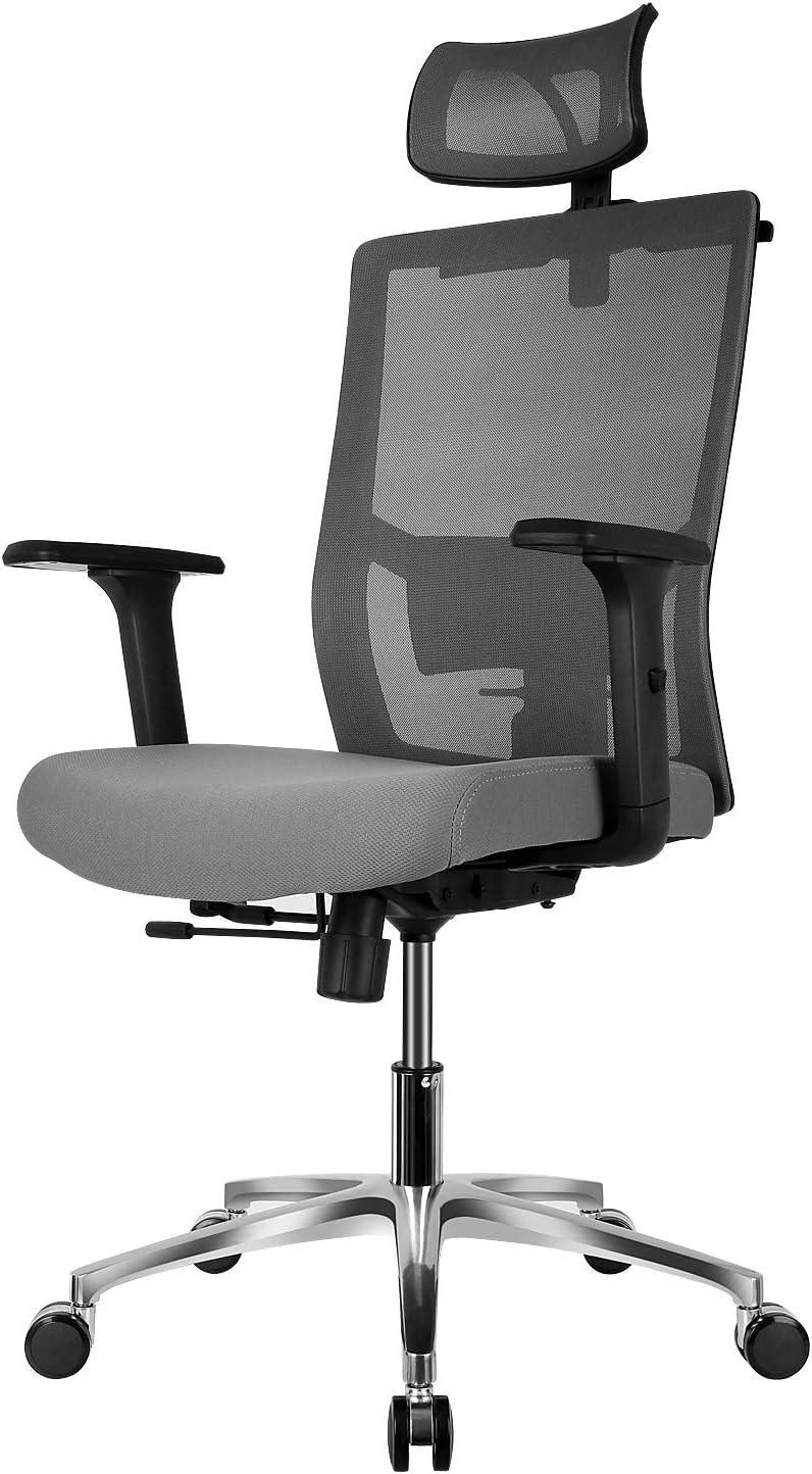 FIXKIT Ergonomic Desk Chair - Adjustable Backrest Angle