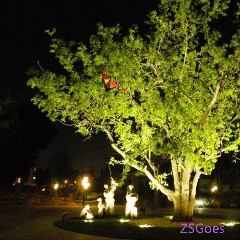 ZSGoes FloodLight 30W LED Flood Light Outdoor Landscape Lamp Home Cool White Waterproof IP66 Garage Square 200W Equivalent Low Voltage 12V 24V DC AC Super Bright Security Lights Street Yard