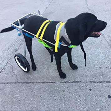 Silla De Ruedas Ajustable para Perros - para Perros Grandes 66-110 Lbs - Altura