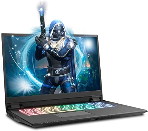 Sager NP8378F2 17.3-Inch FHD 144Hz G-Sync Gaming Laptop