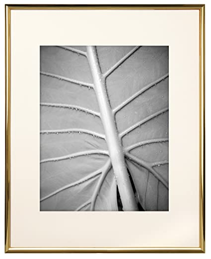 Amazon.com - MCS 11x14 Inch Gallery Aluminum Frame with 8x10 Inch ...