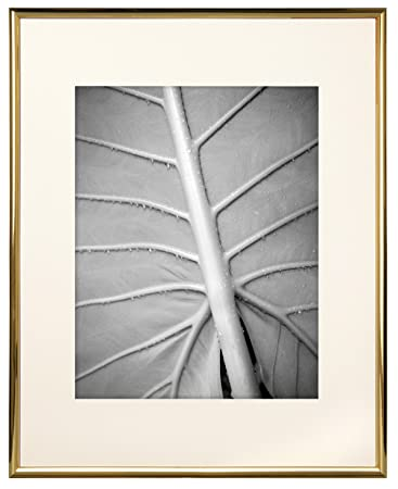 Amazoncom Mcs 11x14 Inch Gallery Aluminum Frame With 8x10 Inch