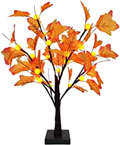 TURNMEON 24 inch Prelit Maple Tree with 24 Pumpkin Lights, Maple Leave Tree for Fall Decor Autumn Decoration Thanksgiving Decorations, Pumpkin Decors for Indoor Home Table Decorations(Warm White)