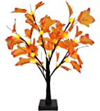 TURNMEON 24 inch Prelit Maple Tree with 24 Pumpkin Lights, Maple Leave Tree for Fall Decor Autumn Decoration…