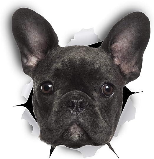 Winston & Bear Perro 3D adhesivos - Pack 2 - Bulldog Francés negro ...