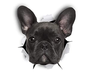 Winston & Bear French Bulldog 3D Dog Stickers - 2 Pack - Black French Bulldog Gifts for Wall, Fridge, Toilet and More - Retail Packaged Frenchie Stickers