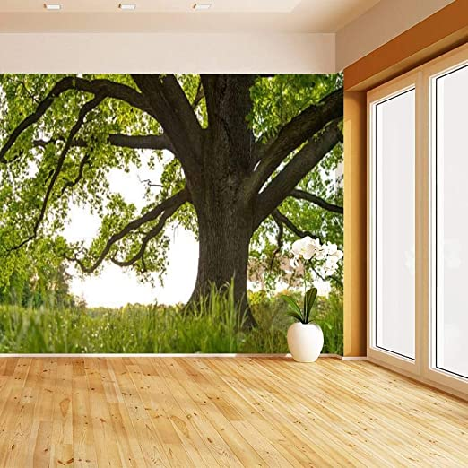 Amazon Com Old Oak Tree Canopy In Spring From Frog S Eye Grass Perspective Self Adhesive Peel And Stick Wallpaper Self Stick Mural Photos Home Wall Paper Sticker Wall Mural Decals Fresco Posters Removable
