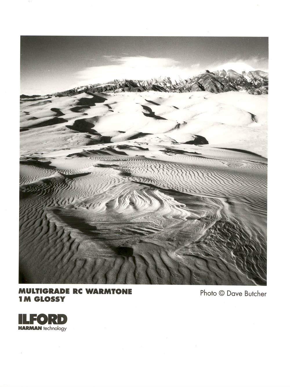 Ilford Multigrade RC Warmtone VC B & W Enlarging Paper - 8x10''-100 Sheets - Glossy Surface by Ilford