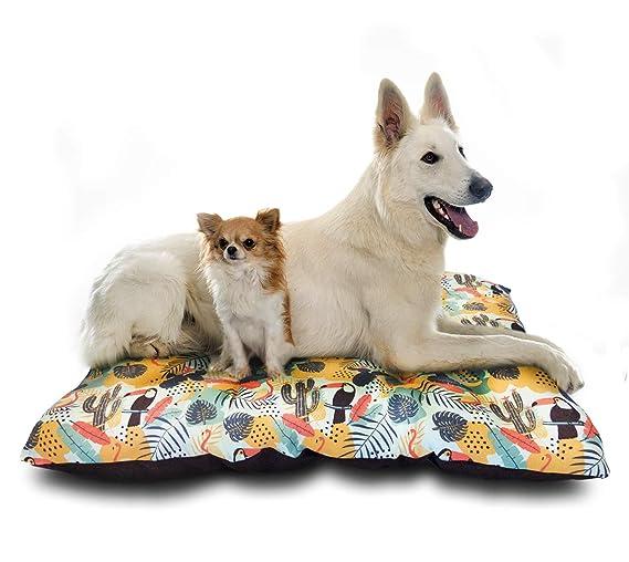 @Margot Cama, colchón, Puff para Perro - Polialgodón Que ayudará AL Ambiente - 80 cm * 60 cm * 9 cm (Tropical): Amazon.es: Productos para mascotas