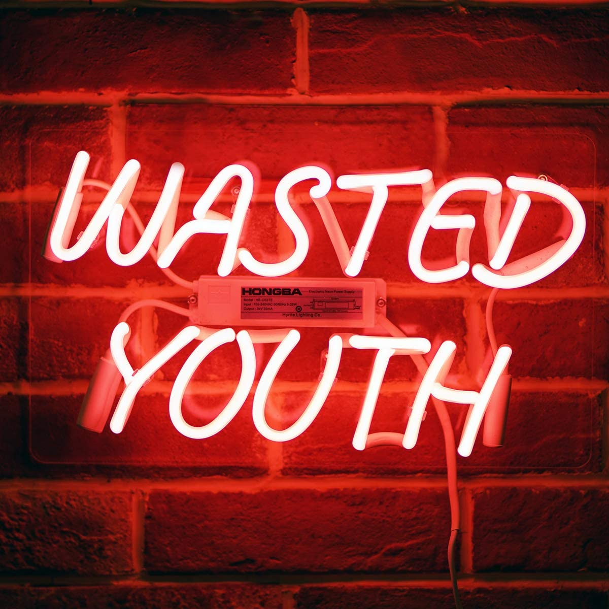 "Neon Signs Wasted Youth Beer Bar Bedroom Neon Light Handmade Glass Neon Lights Sign for Bedroom Office Hotel Pub Cafe Recreation Room Wall Decor Night Light 15"" x 9"" Pink"