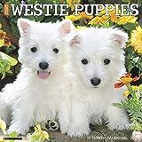 Just Westie Puppies 2020 Wall Calendar (Dog Breed Calendar)