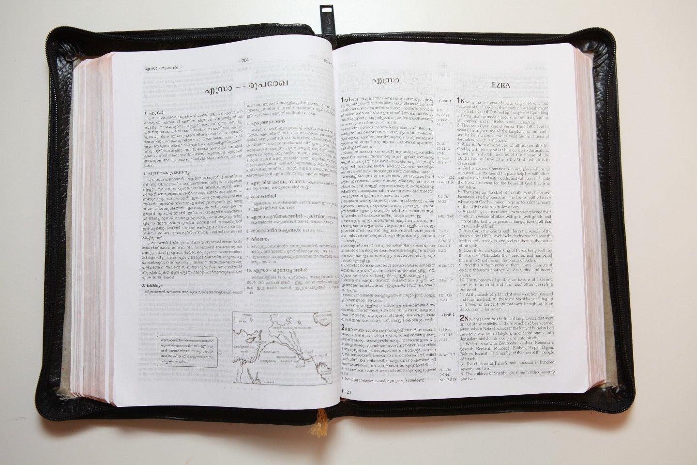 Dake annotated bible free download.