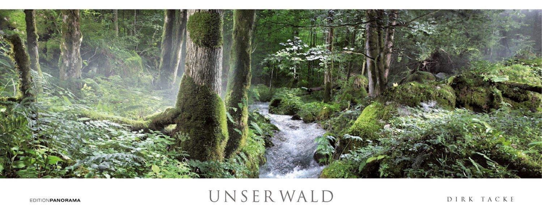 Unser Wald. Magnum Kalender immerwährend