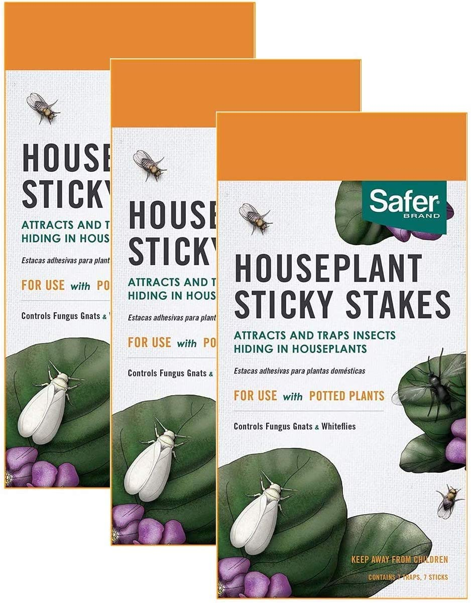 HOME-OUTDOOR Safer Brand Houseplant Sticky Stakes Insect Trap 3 Pack of 7 (21 Traps Total)