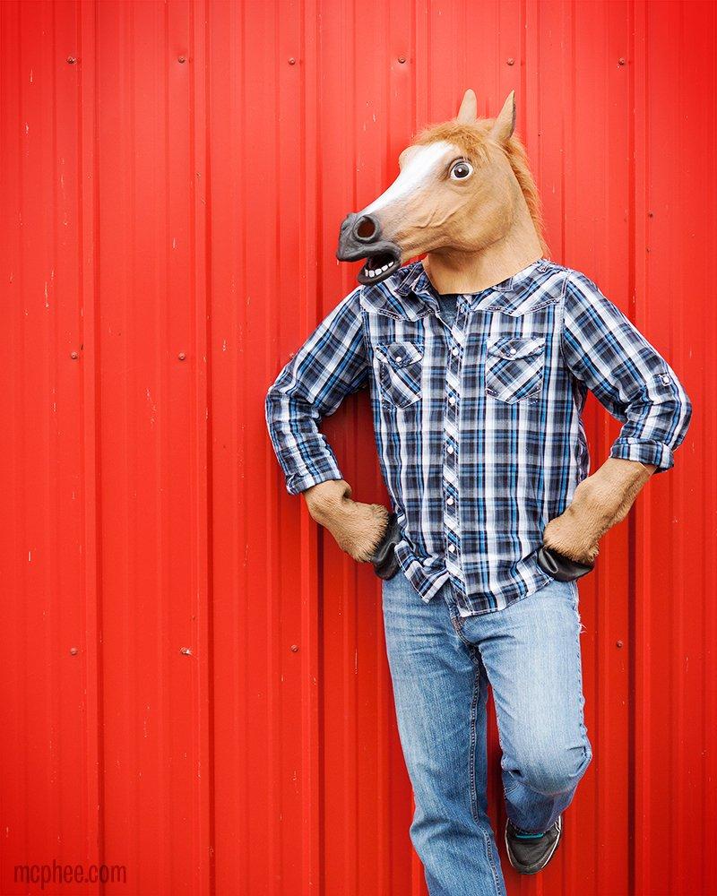Amazon.com: Laylala Latex Horse Head Mask with 1 Pair Horse Hooves ...