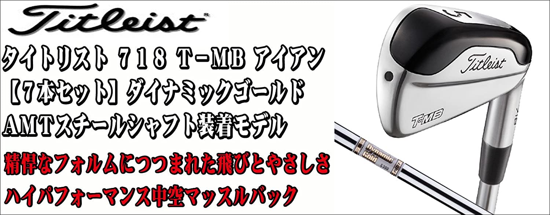 TITLEIST(タイトリスト) 718 T-MB アイアン7本セット (#4~PW) Dynamic Gold AMT スチールシャフト装着モデル B06XXYTPJP