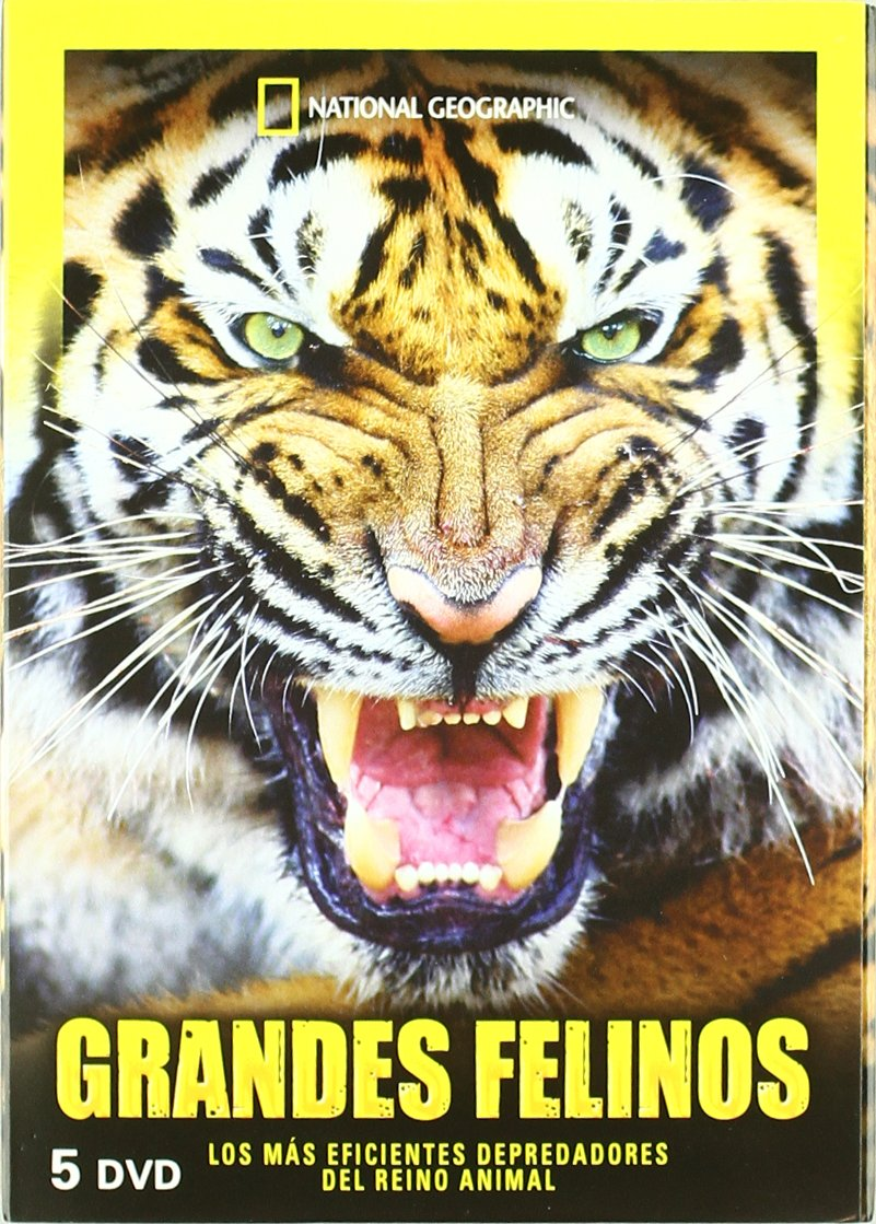 Amazon.com: National Geographic : Grandes Felinos (National ...