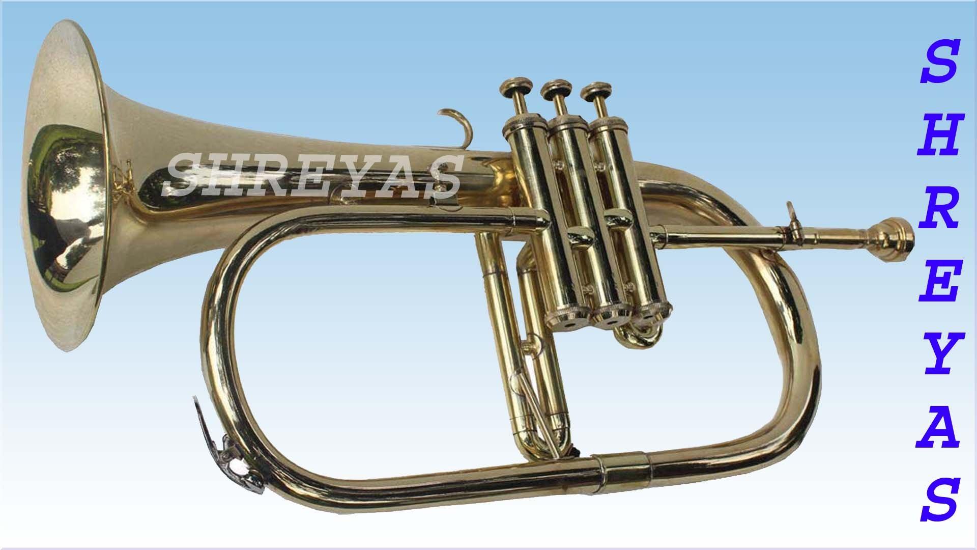 Shreyas Great Value 3-Valve Bb Natural Brass Flugel Horn Flugelhorn with Designer Hardcase VTR156 by SHREYAS