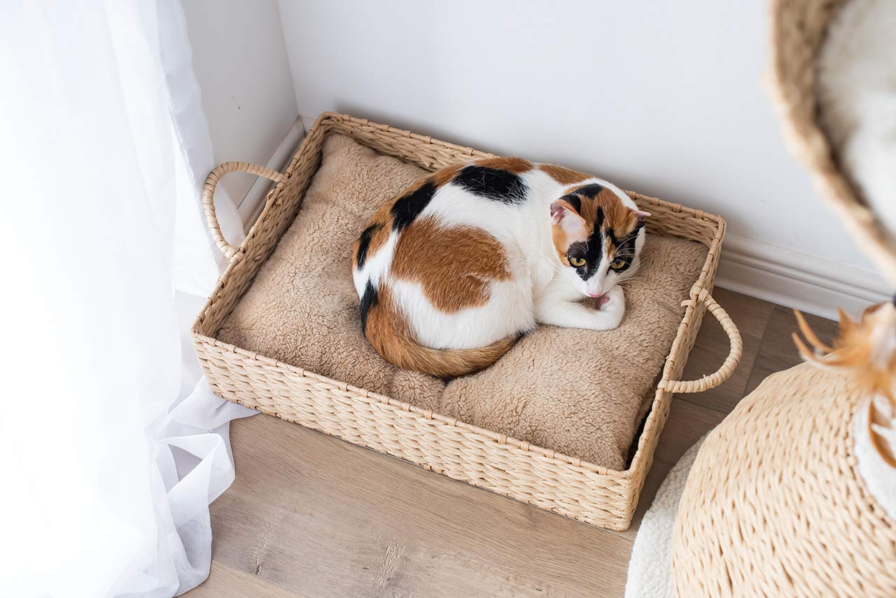 Natural PetPals Hand Made Paper Rope Round Bed for Cat//Dog//Pet Sleep with Pillow
