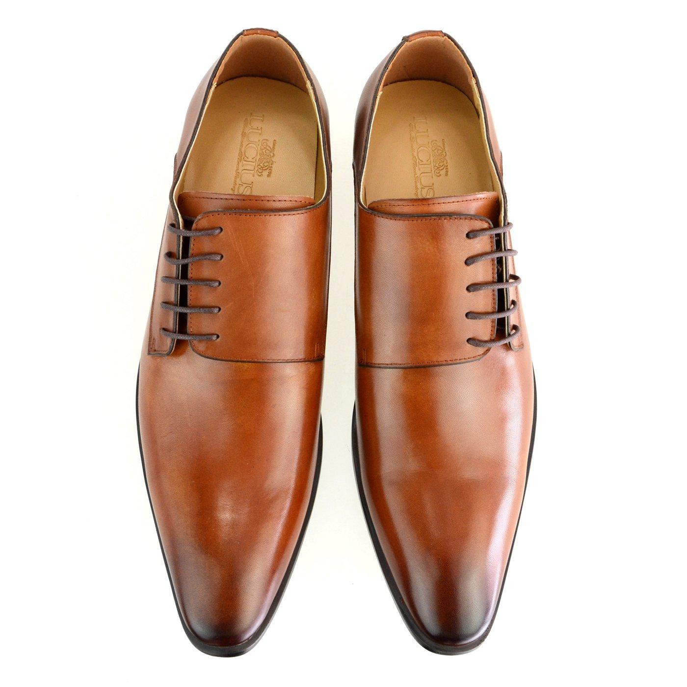 [ルシウス] LUCIUS ビジネスシューズ メンズ 革靴 外羽根 サイドレースアップ 本革 レザー ドレスシューズ プレーントゥ 紳士靴 【LLT78-2-CPZ】 B07F1L6WBD 24.5 cm 3E ブラウン ブラウン 24.5 cm 3E