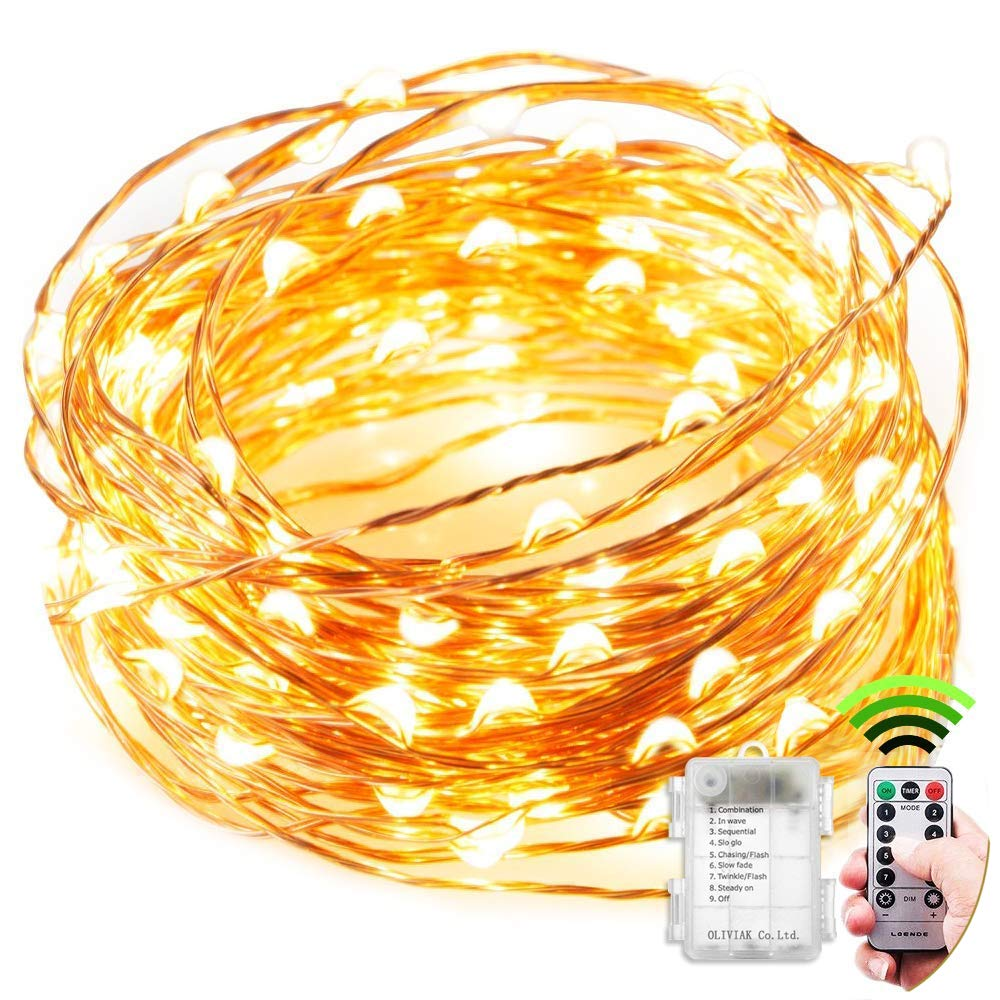 led String Lights Battery Powered Fairy Lights, 3M30LED Copper for Garden, vases, Bedroom, Wedding, Party, Christmas Tree DIY Xmas Decorations Indoor/Outdoor (Warm Light) DY TECHNOLOGY CO. LIMITED