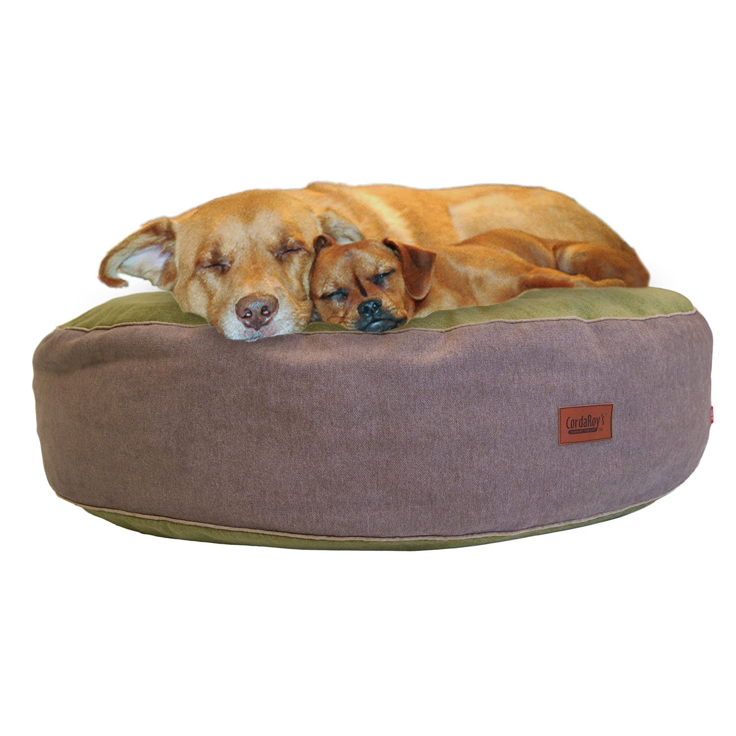 CordaRoy's PC-MN-KW40 Forever Pet Bed, Large/40'', Kiwi