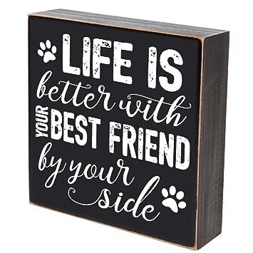 Amazon.com: Las mejores cosas de la vida Pets Regalos para ...