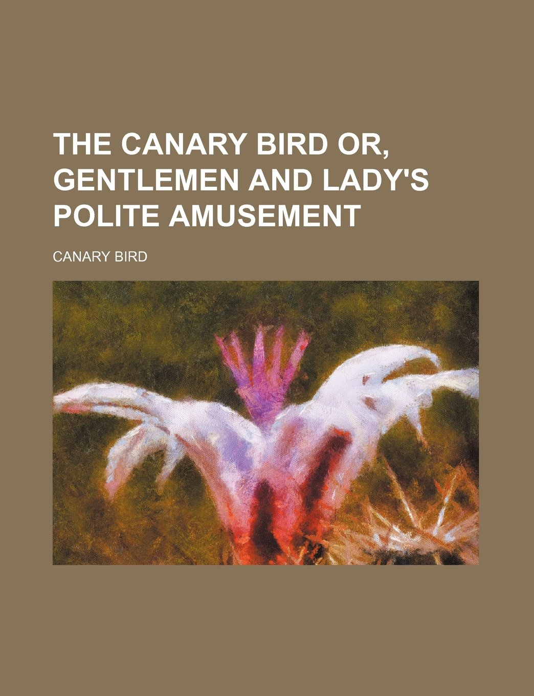 The canary bird or, Gentlemen and lady's polite amusement pdf