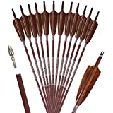 PANDARUS Archery 31-Inch Carbon Hunting Arrows, 4-Inch Turkey Feather Fletching with Replaceable Points, Targeting Practice A