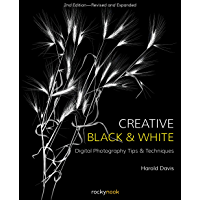 Creative Black and White: Digital Photography Tips and Techniques book cover