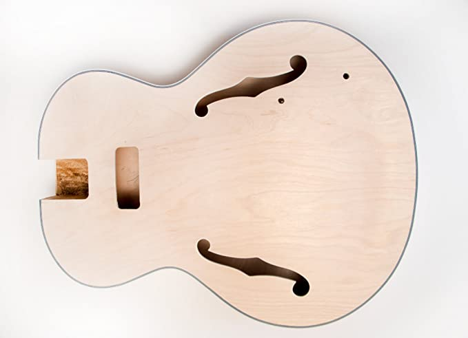DIY Kit de guitarra eléctrica - hueca cuerpo construir su propio Kit de guitarra - es: Amazon.es: Instrumentos musicales
