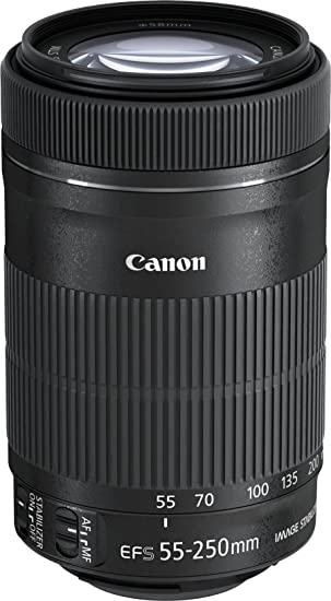 Canon EF-S 55-250mm f/4-5.6 is STM Camera Lenses at amazon
