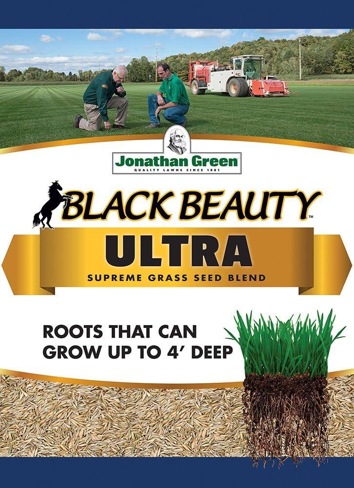 Jonathan Green 10322 Black Beauty Ultra Grass Seed Mix, 7 Pounds : Grass Plants : Garden & Outdoor