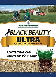 Jonathan Green 10321 Black Beauty Ultra Grass Seed Mix, 3 Pounds
