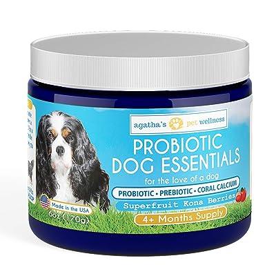 Pet Probiotics