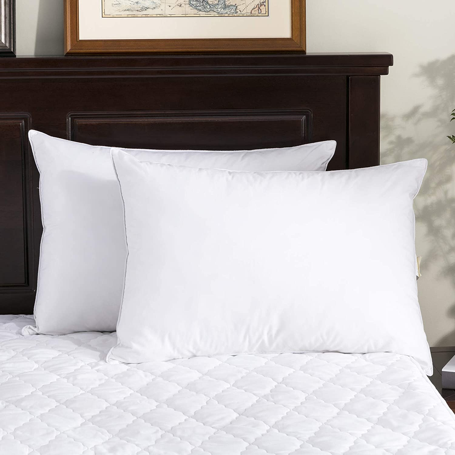 puredown Standard Size Soft Down Feather Bed Pillows Sleeping Washable-Standard Size-2 packs-100/% Cotton Cover