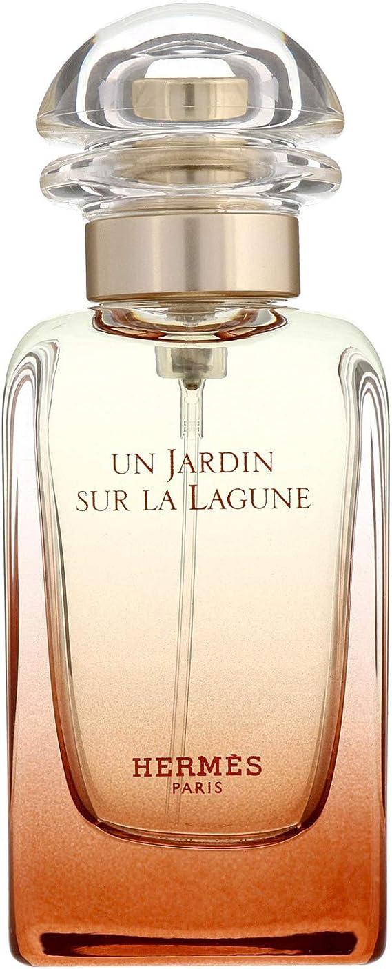 Hermes Un Jardin Sur la Lagune Edt Vapo 100 ml. 100 g: Amazon.es: Belleza