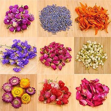 Amazon.com: Oameusa - Kit de flores secas para hacer velas ...