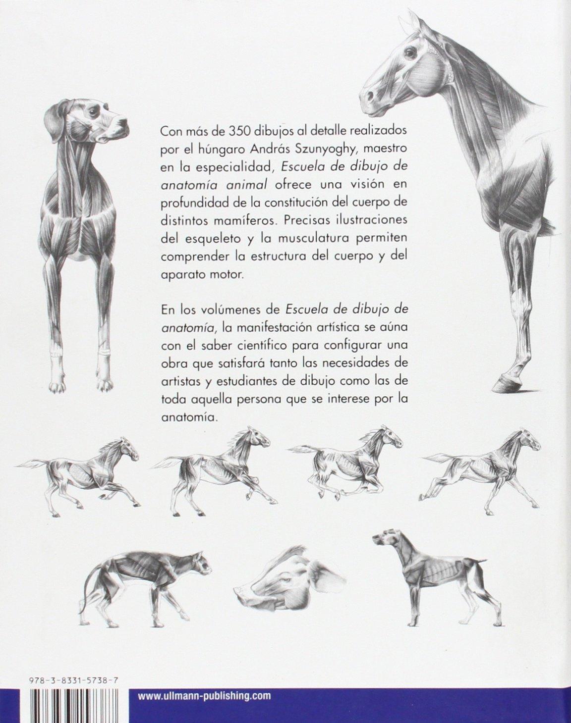Escuela de dibujo de anatomía animal: Amazon.es: András Szunyoghy ...