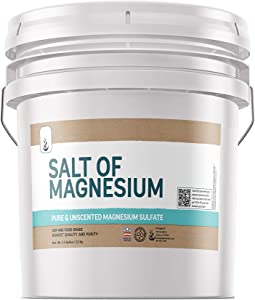 Salt of Magnesium: Pure Epsom Salt (3.5 Gallon Bucket, 32 lbs) by Pure, USP & Food Grade, Unscented, Soothes Sore Muscles, Natural Skin Scrub, Anti-Inflammatory