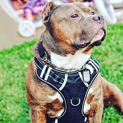 BABYLTRL Big Dog Harness No Pull Adjustable Pet Reflective Oxford Soft Vest