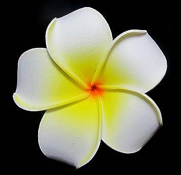 Amazon white foam plumeria flower hair clip beauty white foam plumeria flower hair clip mightylinksfo
